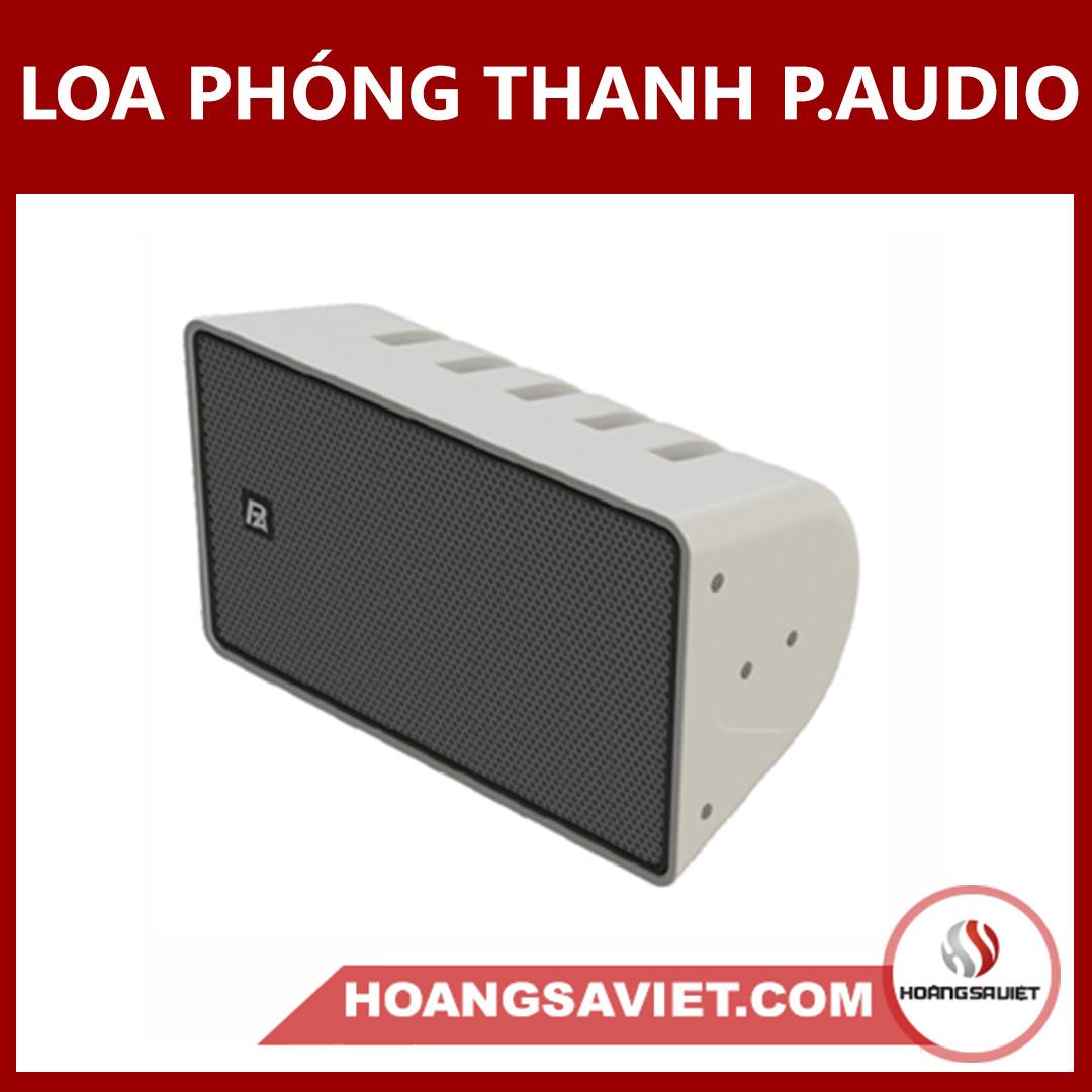 Loa Phóng Thanh Ngoài Trời (Công Cộng) P.audio SW-122C