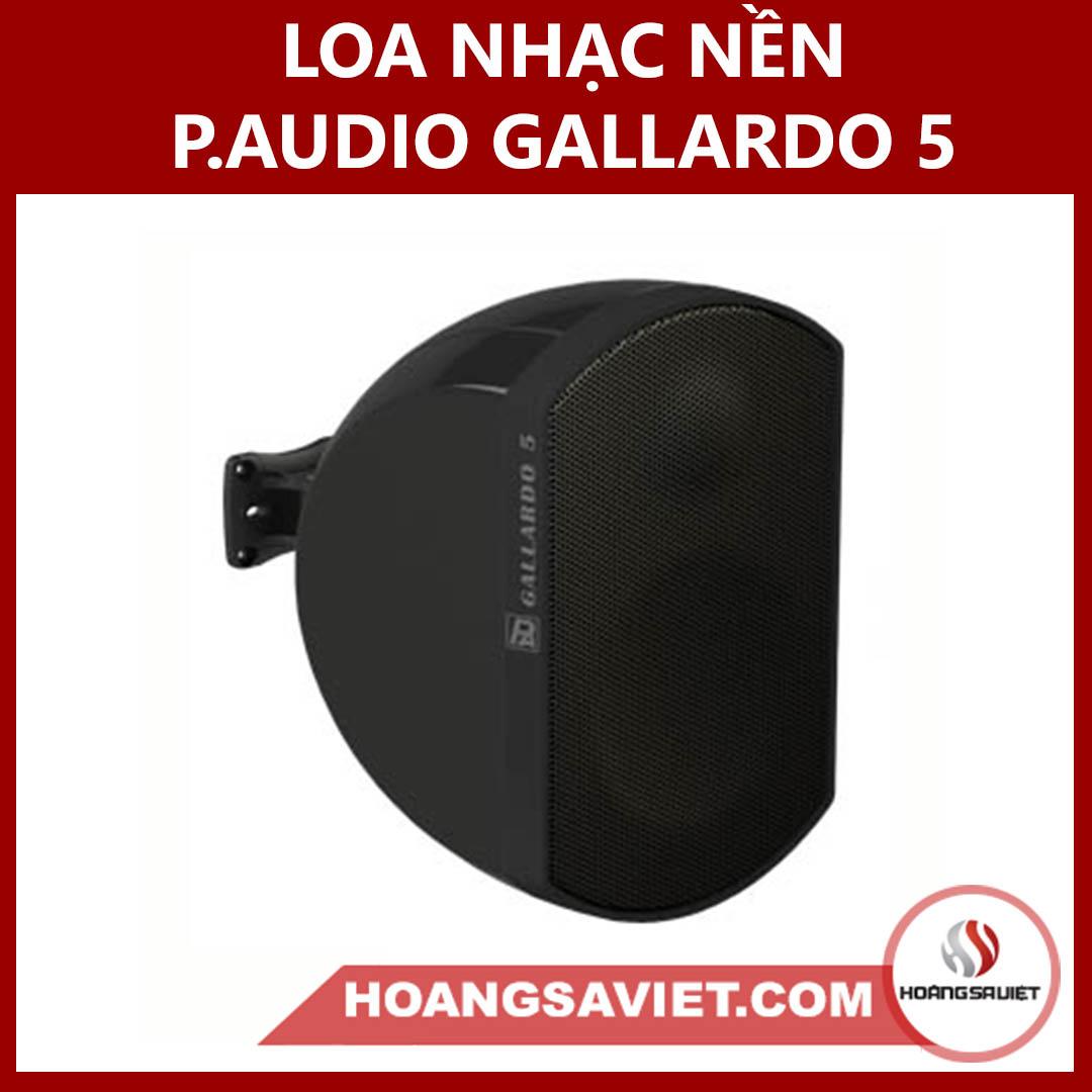 Loa Nhạc Nền (công Cộng) P.audio GALLARDO 5 Thái Lan