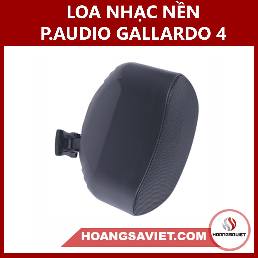 Loa Nhạc Nền (công Cộng) P.audio GALLARDO 4 Thái Lan