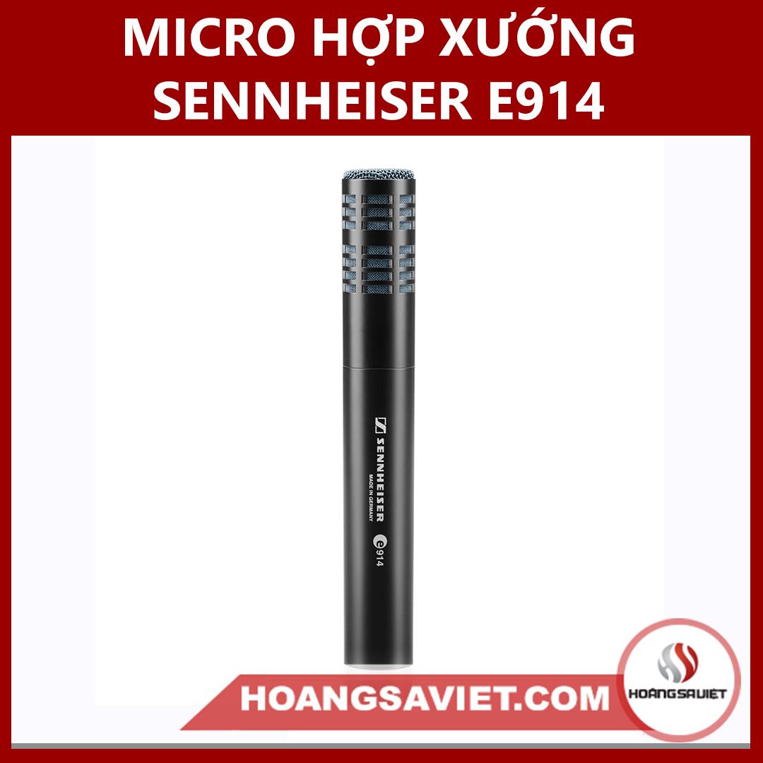 Micro Hợp Xướng Sennheiser E914