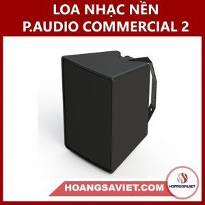 Loa Nhạc Nền (công Cộng) P.audio Commercial Two Thái Lan