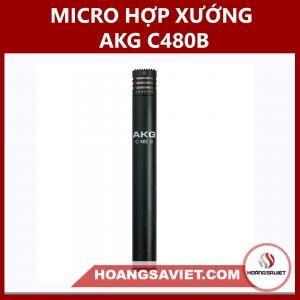Micro Hợp Xướng AKG C480B