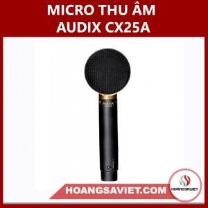 Micro Thu Âm Audix CX25A